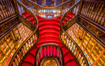 Bookstore Lello in Porto, Portugal